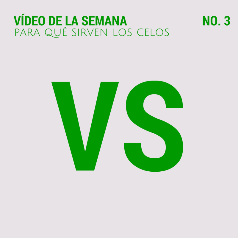 VS (1)